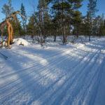 Balade en pleine nature finlandaise