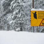 La Laponie, le territoire des rennes