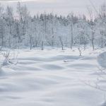Vacances en Laponie finlandaise