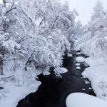 Voyage en Finlande